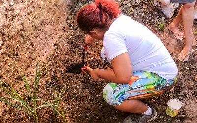 Inec realiza encontros virtuais de Permacultura