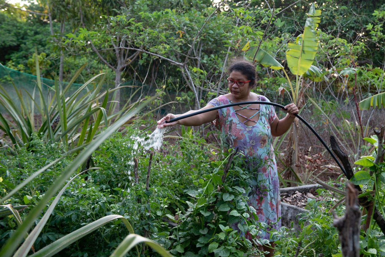 Agricultora regando as plantas